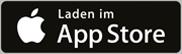 Icon App Store